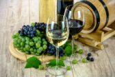 Gramma Wines intentioneaza sa intre si pe piata turismului viticol